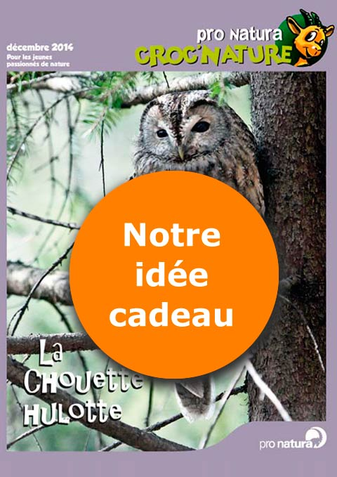 Magazine junior «Croc'nature»